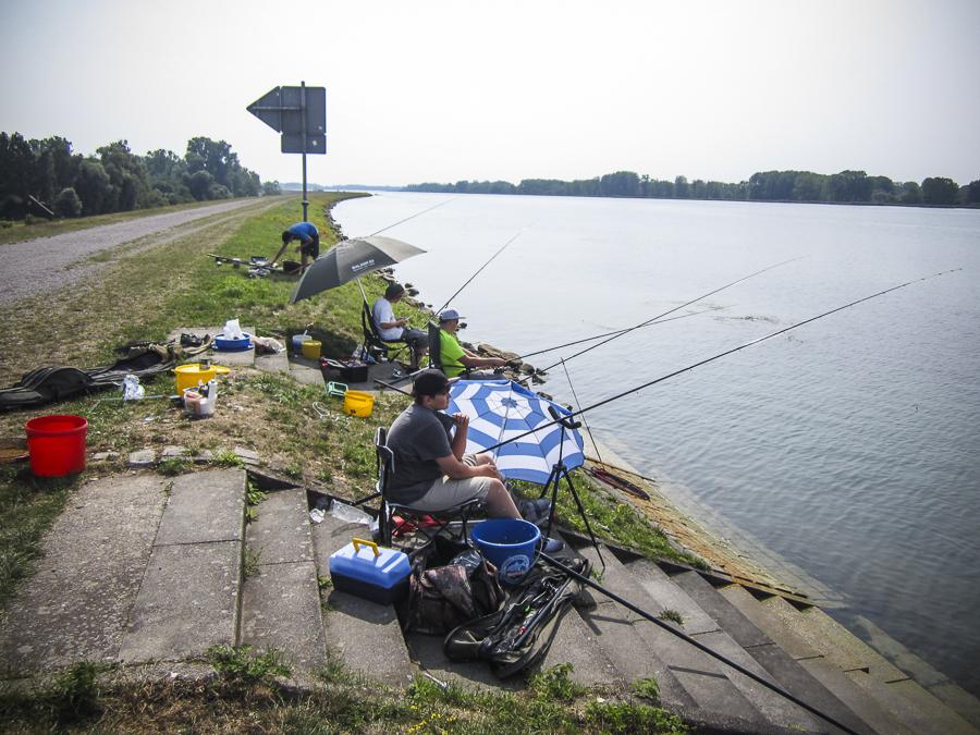 BSFV – Team erfolgreich bei Bundesjugendfischereitagen